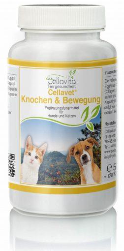 CellaVet Knochen & Bewegung – für Hunde & Katzen