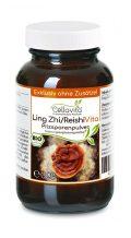 Ling Zhi / Reishi Pilzsporen Pulver (Exklusiv, reine Sporen vom Reishi-Pilz)
